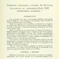 VARELA, Julio César - Gestación, nacimiento y eclosión de Bothriurus bonariensis var. bonariensis (Koch, 1842).PDF